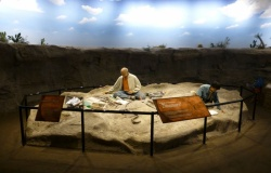 Muzeum Kreacjonistyczne